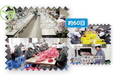 中国工場による生産(約50日)
