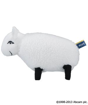 羊のモリー